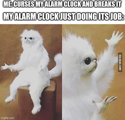 alarm clock |  MY ALARM CLOCK JUST DOING ITS JOB:; ME: CURSES MY ALARM CLOCK AND BREAKS IT | image tagged in confused white monkey | made w/ Imgflip meme maker