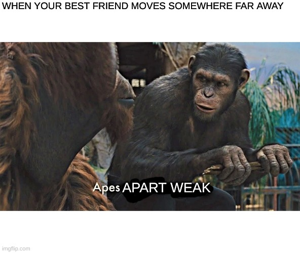 Ape together strong |  WHEN YOUR BEST FRIEND MOVES SOMEWHERE FAR AWAY; APART WEAK | image tagged in ape together strong | made w/ Imgflip meme maker