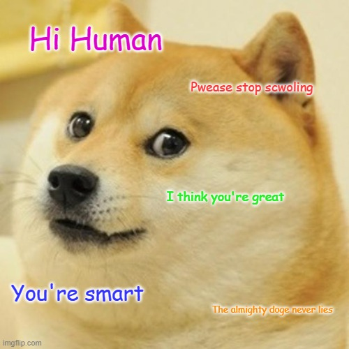 The doge never lies |  Hi Human; Pwease stop scwoling; I think you're great; You're smart; The almighty doge never lies | image tagged in memes,doge | made w/ Imgflip meme maker