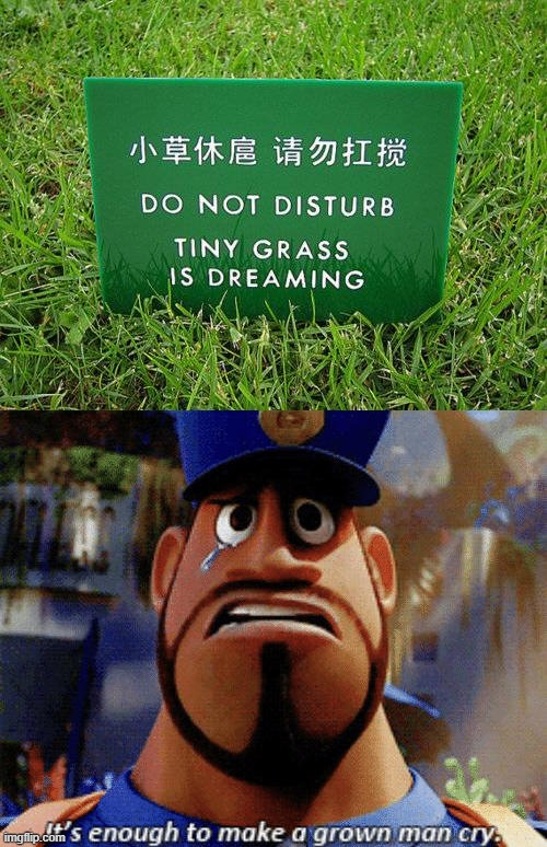 Tiny grass is dreaming.... | image tagged in it's enough to make a grown man cry,funny,memes | made w/ Imgflip meme maker