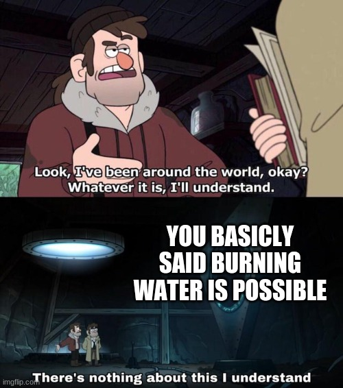 There is nothing about this I understand | YOU BASICLY SAID BURNING WATER IS POSSIBLE | image tagged in there is nothing about this i understand | made w/ Imgflip meme maker