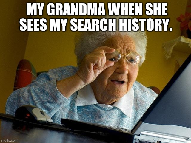 Grandmas on The Internet |  MY GRANDMA WHEN SHE SEES MY SEARCH HISTORY. | image tagged in memes,grandma finds the internet | made w/ Imgflip meme maker