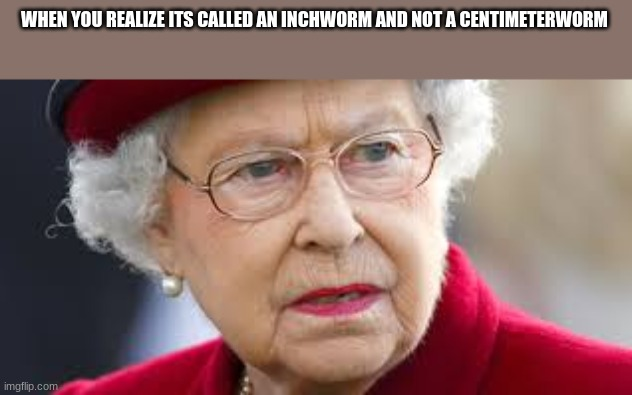 metric system |  WHEN YOU REALIZE ITS CALLED AN INCHWORM AND NOT A CENTIMETERWORM | image tagged in angry queen elizabeth | made w/ Imgflip meme maker