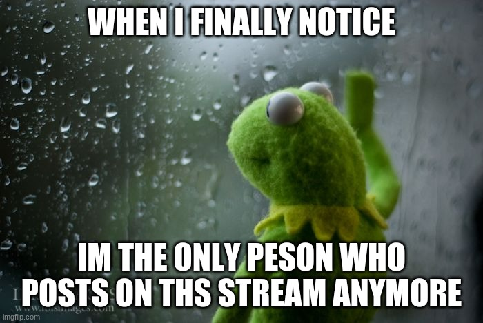 kermit window |  WHEN I FINALLY NOTICE; IM THE ONLY PESON WHO POSTS ON THS STREAM ANYMORE | image tagged in kermit window | made w/ Imgflip meme maker