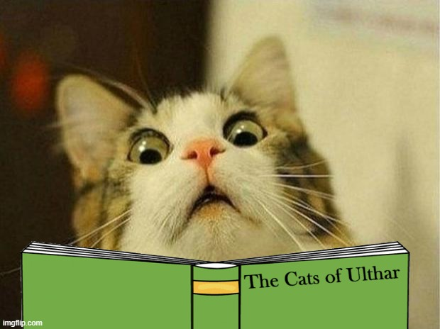 reading the cats of ulthar | image tagged in scared cat,cats,funny,horror | made w/ Imgflip meme maker