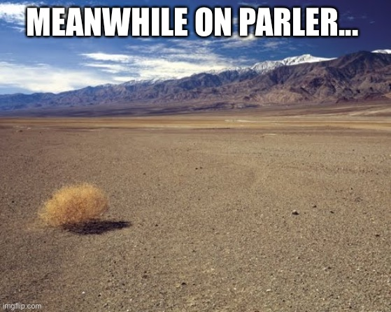 Meanwhile on Parler |  MEANWHILE ON PARLER... | image tagged in desert tumbleweed | made w/ Imgflip meme maker