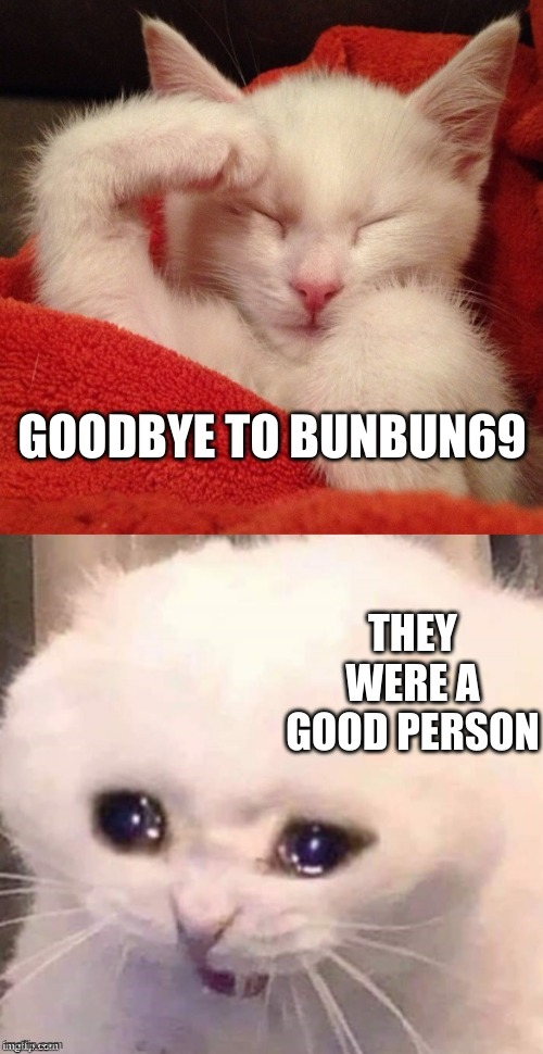 They will be missed |  GOODBYE TO BUNBUN69; THEY WERE A GOOD PERSON | image tagged in crying salute cat | made w/ Imgflip meme maker