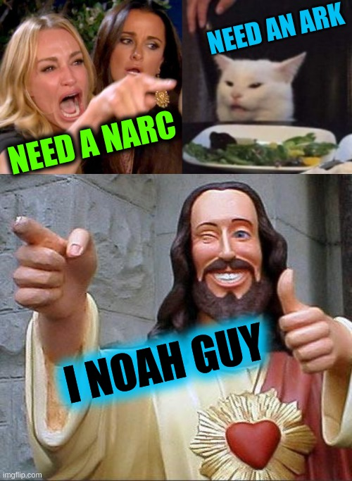 NEED AN ARK; NEED A NARC; I NOAH GUY | image tagged in woman yelling at cat cropped,memes,buddy christ,noah's ark,narcos,puns | made w/ Imgflip meme maker