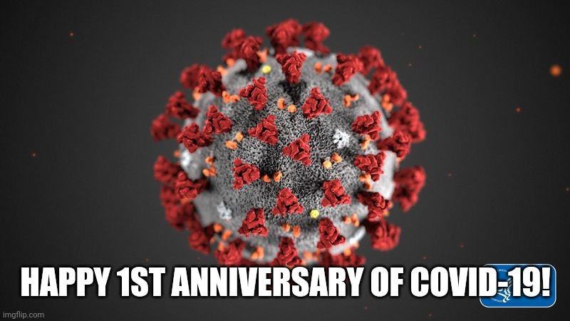PARTY HARD! |  HAPPY 1ST ANNIVERSARY OF COVID-19! | image tagged in covid 19,coronavirus,covid-19,happy birthday,party time,memes | made w/ Imgflip meme maker