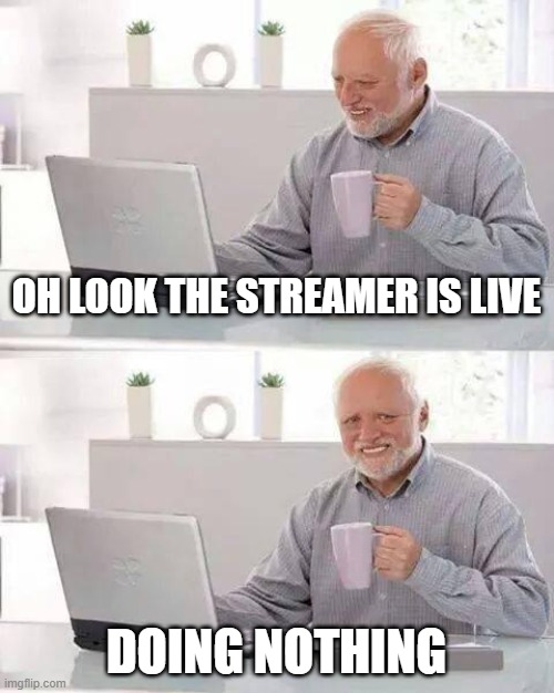 I've seen this too meny times |  OH LOOK THE STREAMER IS LIVE; DOING NOTHING | image tagged in memes,hide the pain harold | made w/ Imgflip meme maker