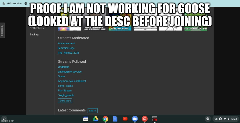 proof |  PROOF I AM NOT WORKING FOR GOOSE (LOOKED AT THE DESC BEFORE JOINING) | image tagged in proof,goose bad duck good | made w/ Imgflip meme maker