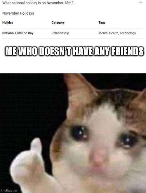 oof. |  ME WHO DOESN'T HAVE ANY FRIENDS | image tagged in approved crying cat | made w/ Imgflip meme maker