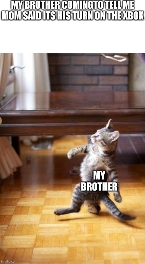 Cool Cat Stroll |  MY BROTHER COMINGTO TELL ME MOM SAID ITS HIS TURN ON THE XBOX; MY BROTHER | image tagged in memes,cool cat stroll | made w/ Imgflip meme maker
