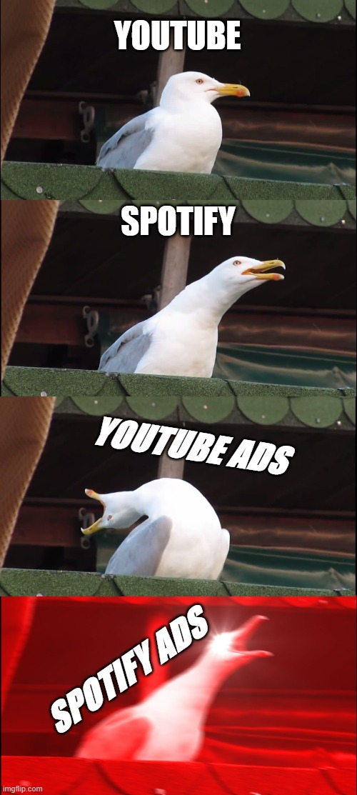 ADS |  YOUTUBE; SPOTIFY; YOUTUBE ADS; SPOTIFY ADS | image tagged in memes,inhaling seagull | made w/ Imgflip meme maker