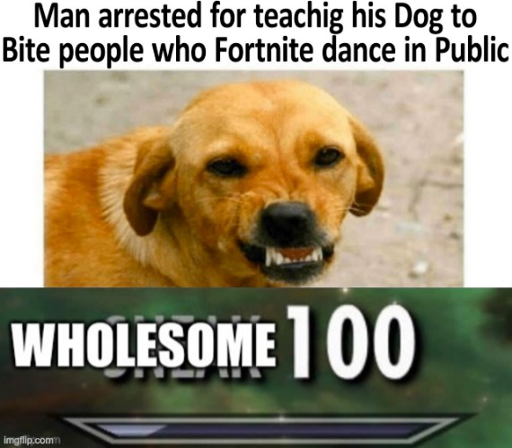 WHOLESOME | image tagged in wholesome 100 | made w/ Imgflip meme maker