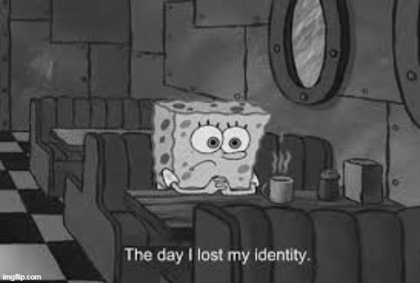 The day I lost my identity | image tagged in the day i lost my identity | made w/ Imgflip meme maker