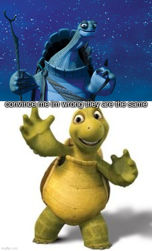 they are the same |  convince me im wrong they are the same | image tagged in master oogway,turtles | made w/ Imgflip meme maker