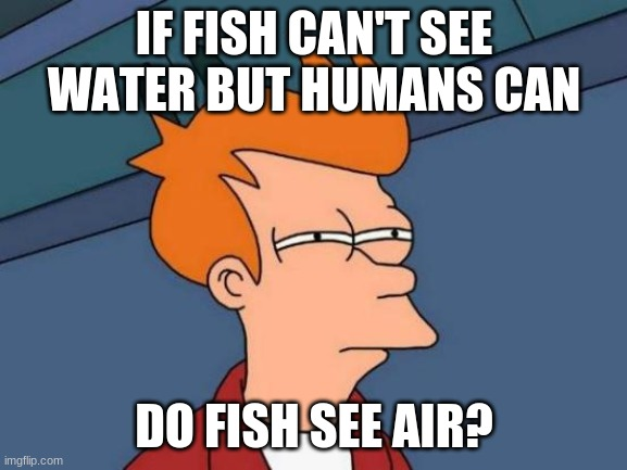 Futurama Fry Meme |  IF FISH CAN'T SEE WATER BUT HUMANS CAN; DO FISH SEE AIR? | image tagged in memes,futurama fry | made w/ Imgflip meme maker