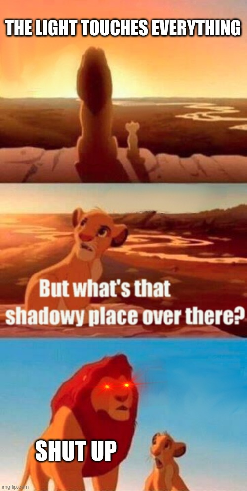 Simba Shadowy Place Meme |  THE LIGHT TOUCHES EVERYTHING; SHUT UP | image tagged in memes,simba shadowy place | made w/ Imgflip meme maker