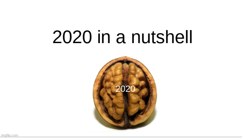 2020 in a nutshell | image tagged in funny | made w/ Imgflip meme maker
