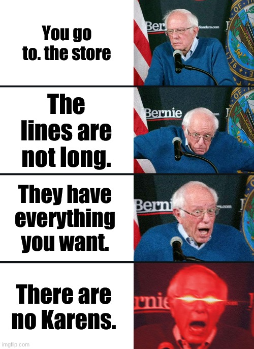 Bernie Sanders reaction (nuked) |  You go to. the store; The lines are not long. They have everything you want. There are no Karens. | image tagged in bernie sanders reaction nuked | made w/ Imgflip meme maker