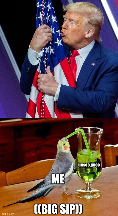 *gags* |  unsee juice; ME; ((BIG SIP)) | image tagged in big sip,donald trump | made w/ Imgflip meme maker