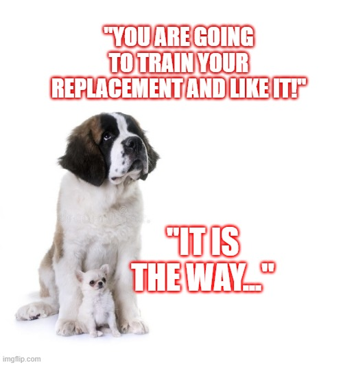 "Dog and Puppy |  ""YOU ARE GOING TO TRAIN YOUR REPLACEMENT AND LIKE IT!""; ""IT IS THE WAY..."" 