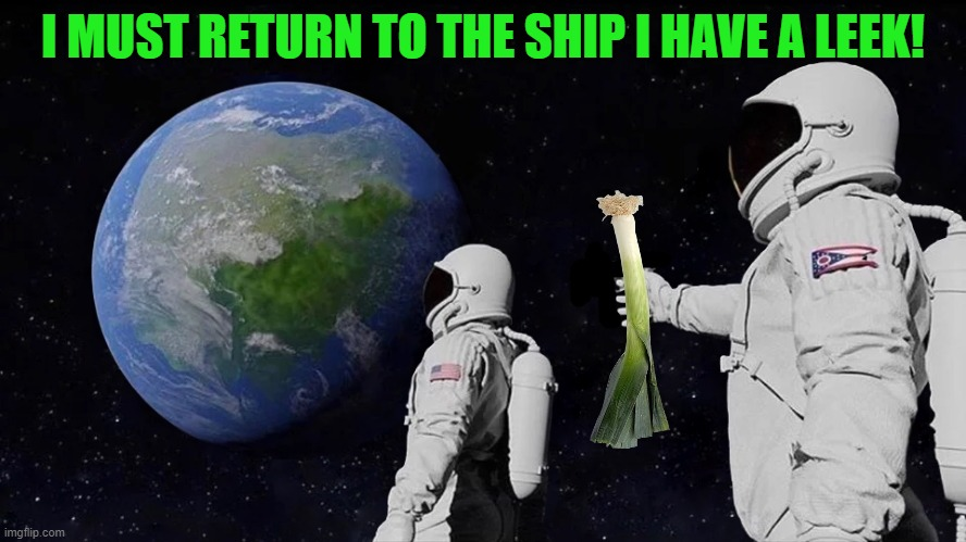 must return to the ship |  I MUST RETURN TO THE SHIP I HAVE A LEEK! | image tagged in leek,space walk | made w/ Imgflip meme maker