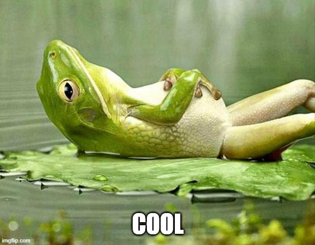 Lazy frog | COOL | image tagged in lazy frog | made w/ Imgflip meme maker
