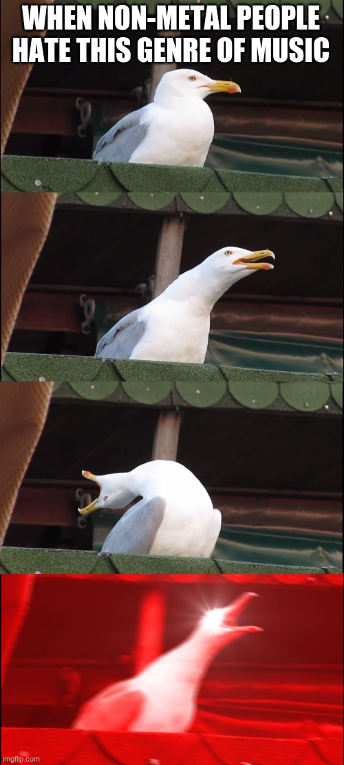 Inhaling Seagull Meme |  WHEN NON-METAL PEOPLE HATE THIS GENRE OF MUSIC | image tagged in memes,inhaling seagull | made w/ Imgflip meme maker