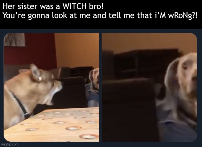She wore a crown and she came down in a bubble! |  Her sister was a WITCH bro!  You're gonna look at me and tell me that i'M wRoNg?! | image tagged in u mad,grow up,wicked witch of the west,wicked witch | made w/ Imgflip meme maker