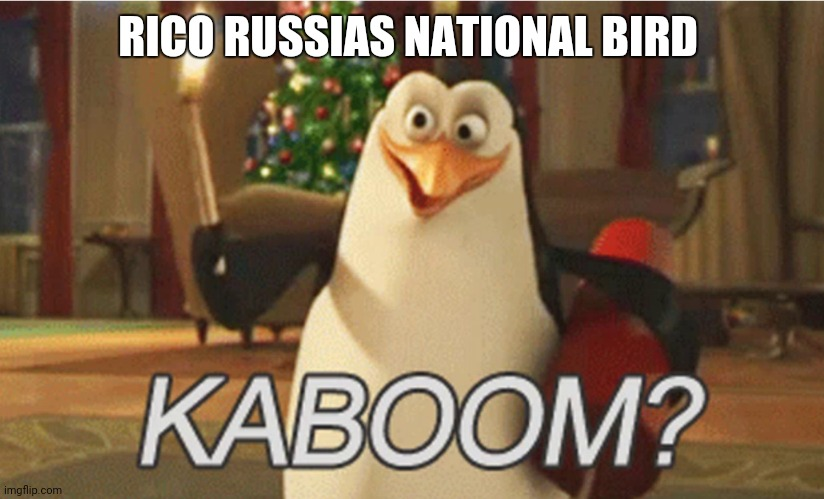 BOOM |  RICO RUSSIA'S NATIONAL BIRD | image tagged in penguins of madagascar kaboom | made w/ Imgflip meme maker