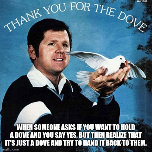 Dofe |  WHEN SOMEONE ASKS IF YOU WANT TO HOLD A DOVE AND YOU SAY YES, BUT THEN REALIZE THAT IT'S JUST A DOVE AND TRY TO HAND IT BACK TO THEM. | image tagged in funny,awkward,funny memes,fun,music | made w/ Imgflip meme maker