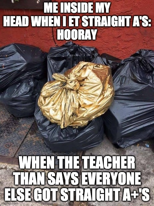 Golden Trash Bag |  ME INSIDE MY HEAD WHEN I ET STRAIGHT A'S: HOORAY; WHEN THE TEACHER THAN SAYS EVERYONE ELSE GOT STRAIGHT A+'S | image tagged in golden trash bag | made w/ Imgflip meme maker