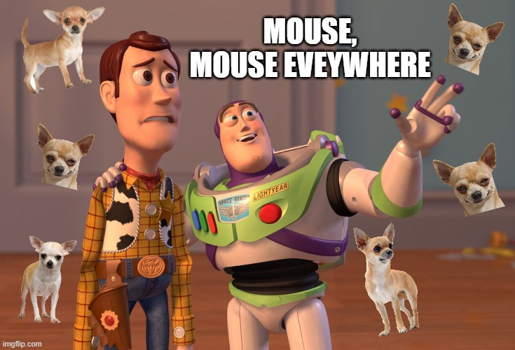 Mouse, Mouse Everywhere |  MOUSE, MOUSE EVEYWHERE | image tagged in memes,x x everywhere,chihuahua | made w/ Imgflip meme maker