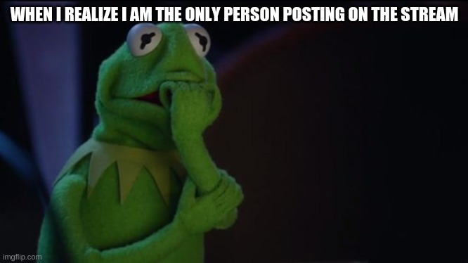 Kermit worried face |  WHEN I REALIZE I AM THE ONLY PERSON POSTING ON THE STREAM | image tagged in kermit worried face | made w/ Imgflip meme maker