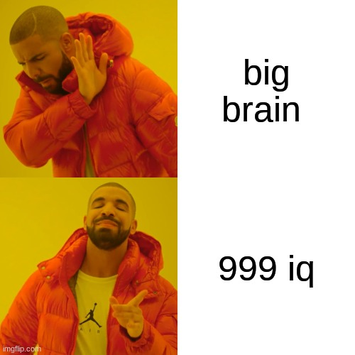 Drake Hotline Bling Meme |  big brain; 999 iq | image tagged in memes,drake hotline bling | made w/ Imgflip meme maker