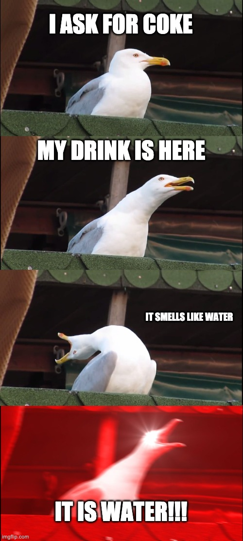 Where my coke? |  I ASK FOR COKE; MY DRINK IS HERE; IT SMELLS LIKE WATER; IT IS WATER!!! | image tagged in memes,inhaling seagull | made w/ Imgflip meme maker