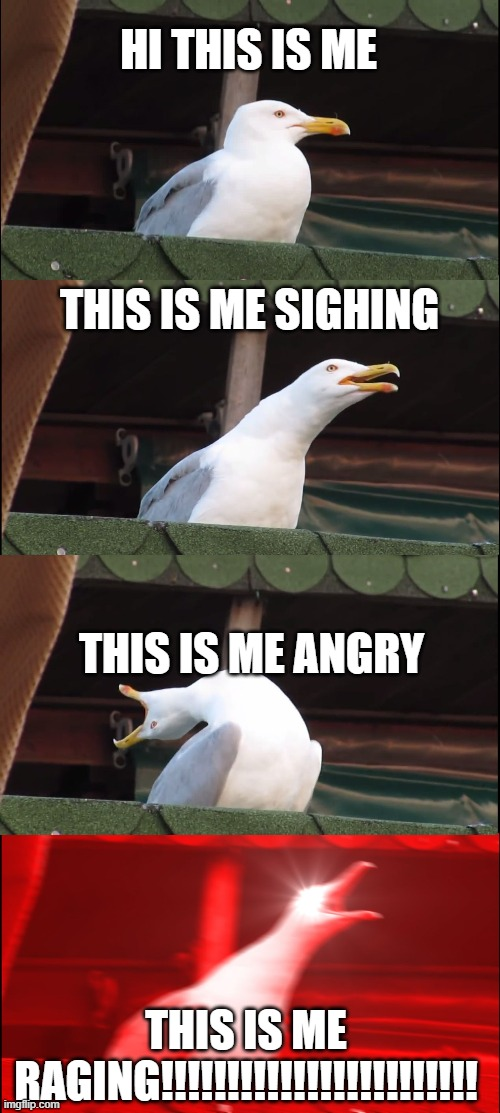 Inhaling Seagull Meme |  HI THIS IS ME; THIS IS ME SIGHING; THIS IS ME ANGRY; THIS IS ME RAGING!!!!!!!!!!!!!!!!!!!!!!!! | image tagged in memes,inhaling seagull | made w/ Imgflip meme maker