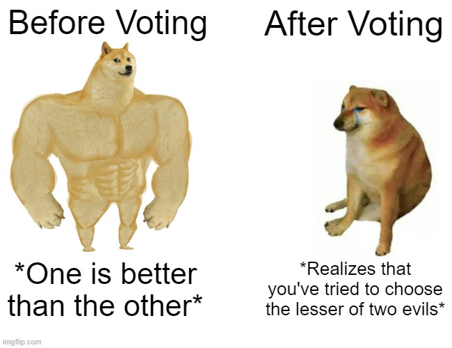 Trump V. Biden in a nutshell: |  Before Voting; After Voting; *One is better than the other*; *Realizes that you've tried to choose the lesser of two evils* | image tagged in memes,buff doge vs cheems,trump,biden,lesser of two evils,voting | made w/ Imgflip meme maker