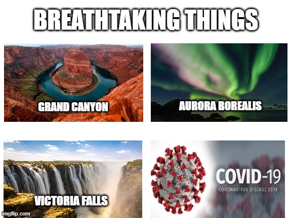 Breathtaking things covid-19 TOO SOON |  BREATHTAKING THINGS; AURORA BOREALIS; GRAND CANYON; VICTORIA FALLS | image tagged in blank white template,too soon,covid-19,covid19,edgy | made w/ Imgflip meme maker