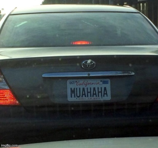 License Plate | image tagged in license plate | made w/ Imgflip meme maker