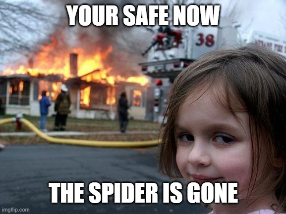 Disaster Girl Meme |  YOUR SAFE NOW; THE SPIDER IS GONE | image tagged in memes,disaster girl | made w/ Imgflip meme maker