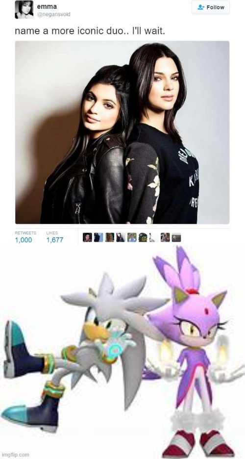 whats more iconic than Silver and Blaze? | image tagged in name a more iconic duo,silver the hedgehog,blaze the cat | made w/ Imgflip meme maker