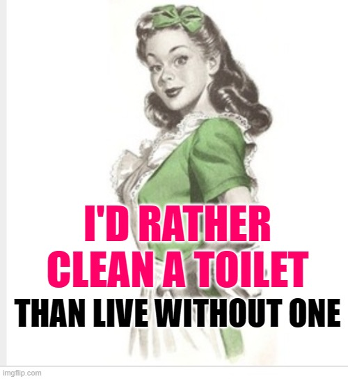 Clean Toilet |  I'D RATHER CLEAN A TOILET; THAN LIVE WITHOUT ONE | image tagged in 50's housewife,cleaning,housework,sassy,funny memes,so true | made w/ Imgflip meme maker