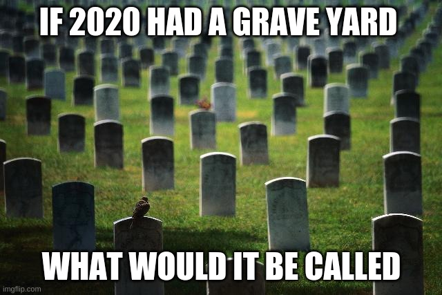 graveyard cemetary |  IF 2020 HAD A GRAVE YARD; WHAT WOULD IT BE CALLED | image tagged in graveyard cemetary,2020,funny,coronavirus,corona | made w/ Imgflip meme maker