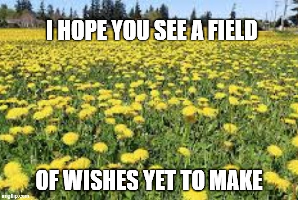 dandelion wish |  I HOPE YOU SEE A FIELD; OF WISHES YET TO MAKE | image tagged in perspective | made w/ Imgflip meme maker