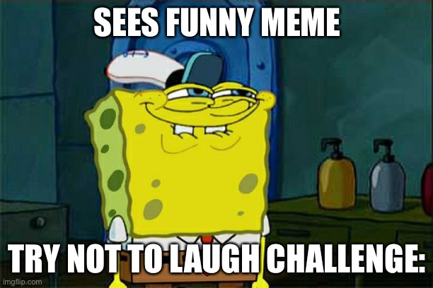 Try not to laugh in a nutshell |  SEES FUNNY MEME; TRY NOT TO LAUGH CHALLENGE: | image tagged in memes,don't you squidward | made w/ Imgflip meme maker