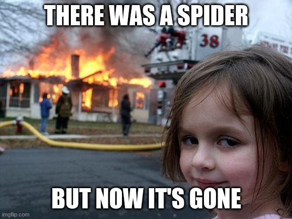 Umm... You did a major number at that house. |  THERE WAS A SPIDER; BUT NOW IT'S GONE | image tagged in memes,disaster girl | made w/ Imgflip meme maker