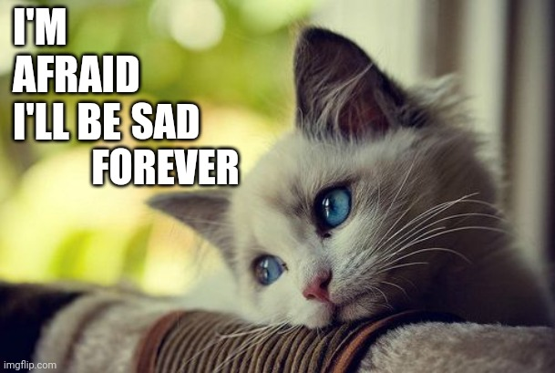 Sorrow |  I'M AFRAID I'LL BE; SAD FOREVER | image tagged in memes,first world problems cat,depression sadness hurt pain anxiety,sadness,sorrow,sad but true | made w/ Imgflip meme maker